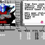 Скриншот Bard's Tale II: The Destiny Knight