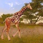 Скриншот Cabela's African Adventures – Изображение 1