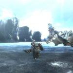 Скриншот Monster Hunter Tri – Изображение 44