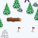 Скриншот Ski Racer