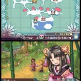 Скриншот Rune Factory 3: A Fantasy Harvest Moon