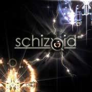 Обложка Schizoid