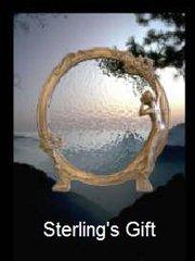 Обложка Sterling's Gift