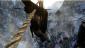 RANDOMs PS4. - Изображение 41
