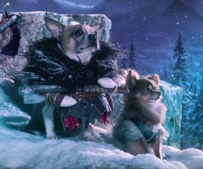 «Собаки войны»: как ошибка в названии God of War превращается в уморительную рекламу