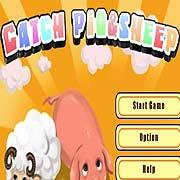 Catch Sheeps&Pigs – фото обложки игры