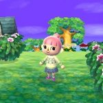 Скриншот Animal Crossing: New Leaf – Изображение 18