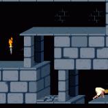 Скриншот Prince of Persia – Изображение 7