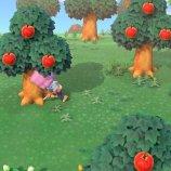 Скриншот Animal Crossing: New Horizons – Изображение 9