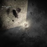 Скриншот Darkwood – Изображение 6