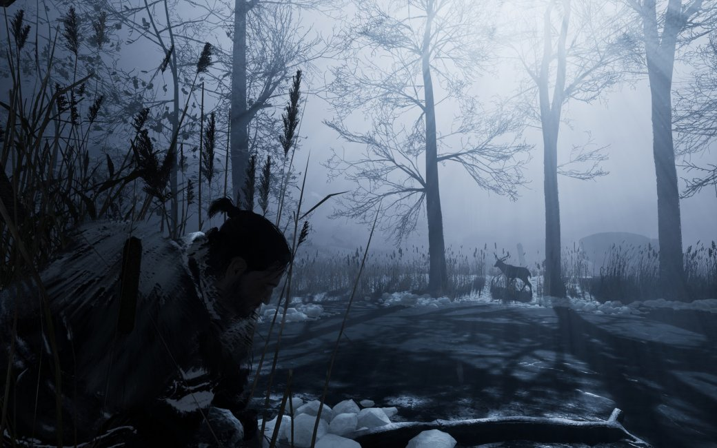 TGA 2017: трейлер искриншоты игры отTHQ Nordicпро вечную зиму— Fade toSilence | Канобу - Изображение 1